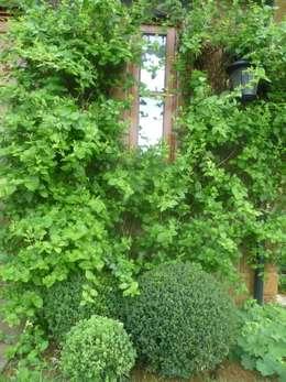 country Garden by Samantha Willis Garden Design