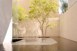 modern Garden by Gantous Arquitectos