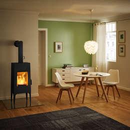 modern Living room by RIKA Innovative Ofentechnik GmbH