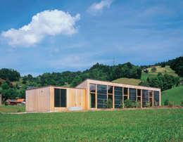 Casas de estilo minimalista por Dietrich Schwarz Architekten AG