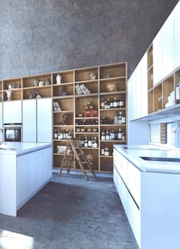 modern Kitchen by Eiland de Wild Keukens