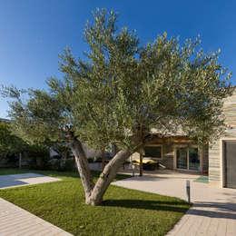 VILLA D. TORRE A MARE BARI: Giardino In Stile In Stile Moderno Di Studio