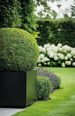 Сады в . Автор – Paul Marie Creation