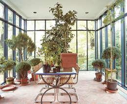 Innenansicht mit Pflanzen: moderner Wintergarten von v. Bismarck Architekt