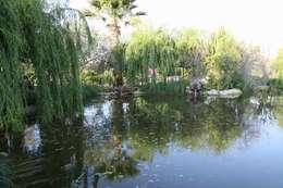 sihirlipeyzaj – sihirli peyzaj: tropikal tarz tarz Bahçe