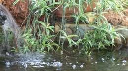 sihirlipeyzaj – sihirli peyzaj: akdeniz tarzı tarz Bahçe