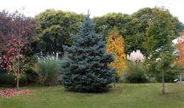 classic Garden by MARIELA DURA ARQUITECTURA PAISAJISTA