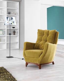 özkan şahin tekstil mobilya ithalat ihracat – Koltuk Modelleri: modern tarz Oturma Odası
