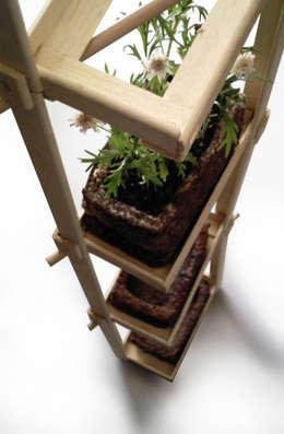 Projekty,  Ogród zaprojektowane przez ANDRE VENTURA DESIGNER
