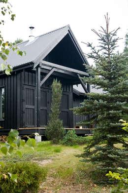 Widok z zachodu, elewacja południowo-zachodnia: styl skandynawskie, w kategorii Domy zaprojektowany przez Magdalena Zawada