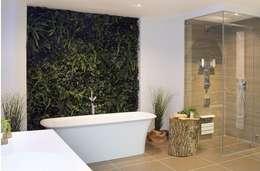 Baños de estilo  por Evergreen Trees & Shrubs