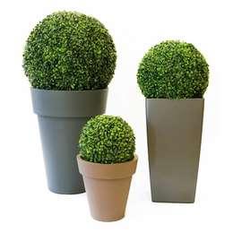 Un giardino da sogno con le piante da esterno