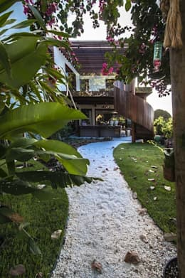 Jardin de style de style Tropical par Roncato Paisagismo e Comércio de Plantas Ltda