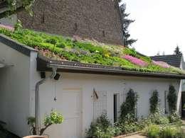 Intensiv Dachbegrünung Bauernhof: mediterraner Garten von Nagelschmitz Garten- und Landschaftsgestaltung GmbH