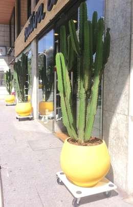 Terrasse de style  par Asilvestrada