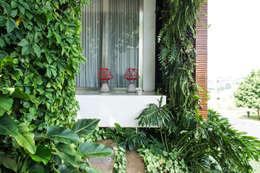Сады в . Автор – Felipe Bueno Arquitetura