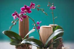 Garrafas com orquídeas.: Jardim  por Ateliê de Cerâmica - Flavia Soares