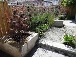 Jardines de estilo minimalista por carol whitehead garden design