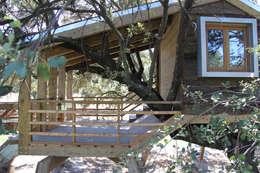 Projekty,  Ogród zaprojektowane przez Urbanarbolismo