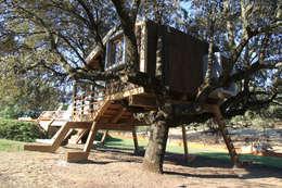 Casa en el árbol enraizada.: Casas de estilo rural de Urbanarbolismo