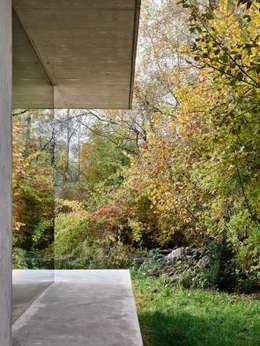 Projekty,  Ogród zaprojektowane przez :mlzd