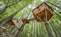 Luftschlösser Baumhausprojekte _ Baumhausherberge Robins Nest:  Hotels von Luftschlösser