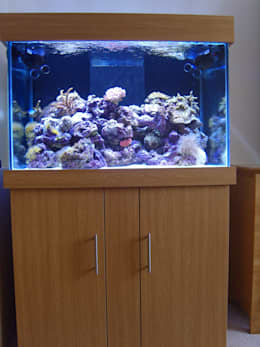 classic Living room by Prime Aquariums Ltd