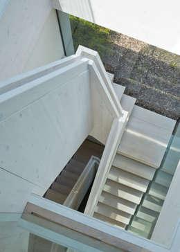 Corridor & hallway by Wilkinson King Architects
