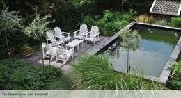 Zwemvijver met terras: moderne Tuin door Groene Kikker Tuinontwerp