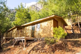в . Автор – tree house kabak