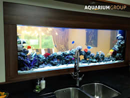 modern Kitchen by AquariumGroup