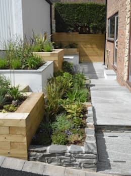 A small contemporary front garden: modern Garden by Robert Hughes Garden Design