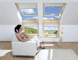 Fakro Pivot Çatı Pencereleri의  창문 & 문