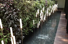 tropical Garden by Tinderbox  Landscape Studio