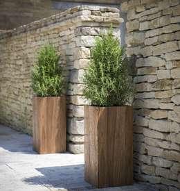 moderne Tuin door Ingarden Limited