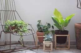 Jardines de estilo minimalista por Pomelo