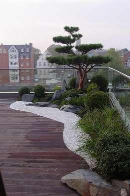 Jardines de estilo asiático de Kokeniwa Japanische Gartengestaltung