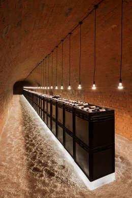 Projekty,  Piwnica win zaprojektowane przez MARCH GUT industrial design OG