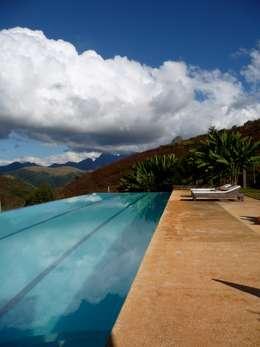 Piscina com raia de 20 metros e borda infinita: Piscinas minimalistas por Ronald Ingber Arquitetura