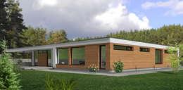 minimalistic Houses by ABC Pracownia Projektowa Bożena Nosiła