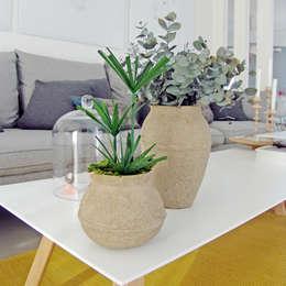 Duo végétal: Salon de style de style eclectique par Adventive