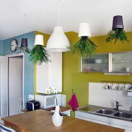 Suspensions végétales: Paysagisme d'intérieur de style  par Adventive