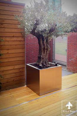 RVS planter: moderne Tuin door  Ernst Baas Hoveniers B.V. / Ernst Baas Tuininrichting B.V.
