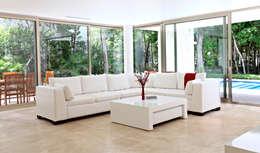 Casa T: Salas de estilo moderno por Enrique Cabrera Arquitecto