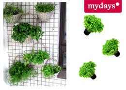 Projekty,  Balkon, weranda i taras zaprojektowane przez mydays