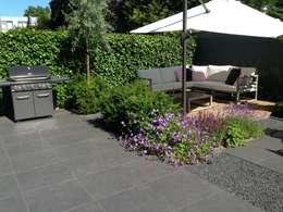 Moderne tuin in Santpoort-Zuid: moderne Tuin door Biesot