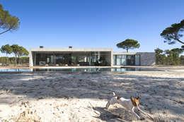 modern Houses by RRJ Arquitectos