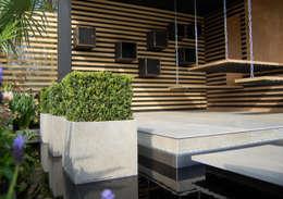 modern Garden by Best4hedging
