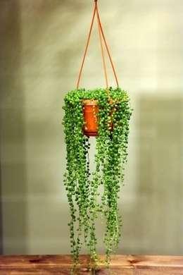 Jardín de estilo  por bitki dekor