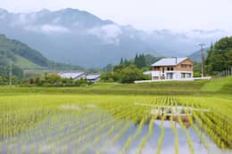 house in Ishikawauchi: とやま建築デザイン室が手掛けた家です。
